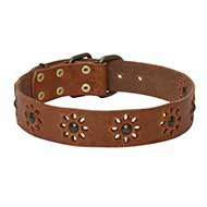Let It Spring with Leather Flower Dog Collar for English Bulldog