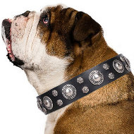 "Dog Collar for English Bulldog ""Vintage Necklace"" Artisan Black"