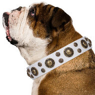 "Dog Collar for English Bulldog ""White Gentle Feather"" Artisan"