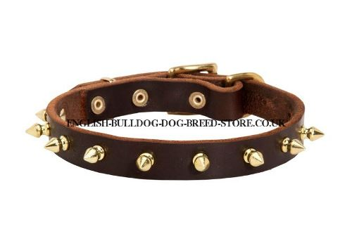 Cute Dog Collar for Pug