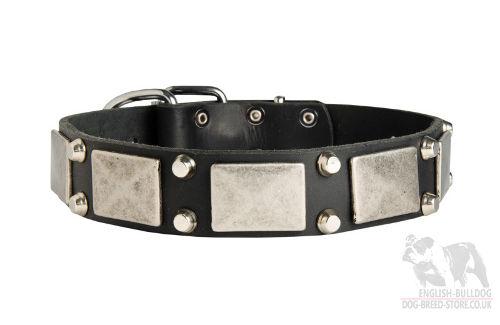 Yoshi Dog Collar