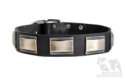 Leather Collar for Boxer