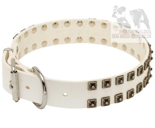 White Studded Dog Collar