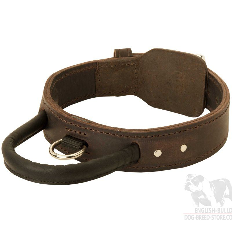 american bulldog collars leather dog collar with handle for american bulldog 244