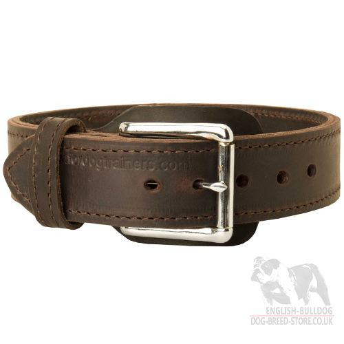 Leather Agitation Dog Collar