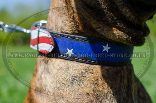 Boxer Leather Dog Collars