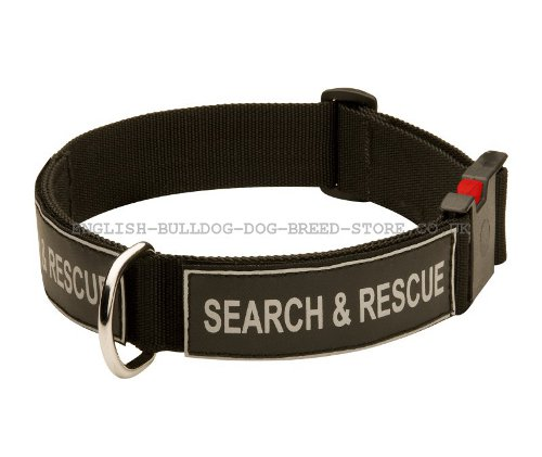 Nylon Dog Collar UK with Patches