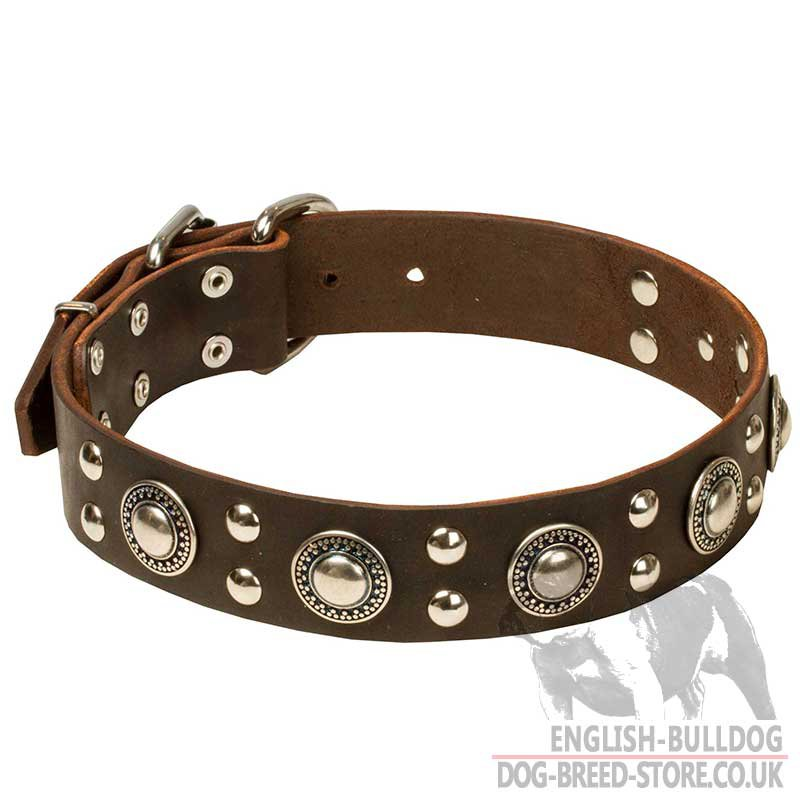 Drum Dog Collars