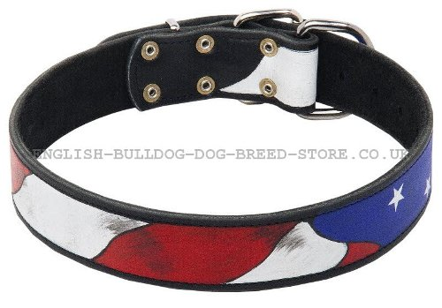 Leather Dog Collar for Boxer