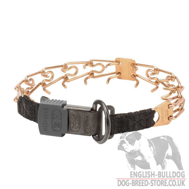 Best Dog Obedience Training Collars