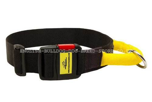 Dog Collar with Handle Nylon
