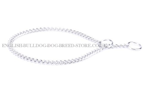 English Bulldog Chain Collars
