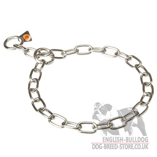 Stainless Steel Dog Chian Collar