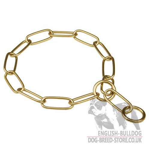 Brass Chain Dog Collars