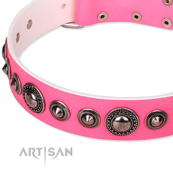 English Bulldog Girl Collars