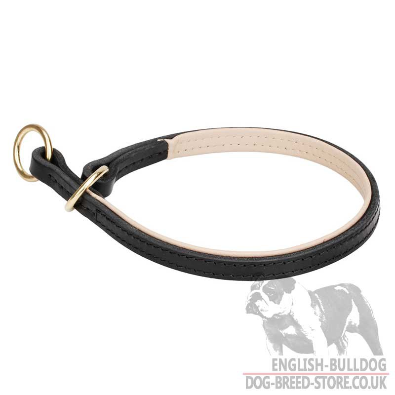 How To Traine Dog With Choker Collar Video