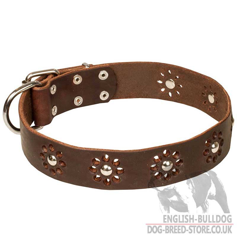 Flowered Dog Collars Uk