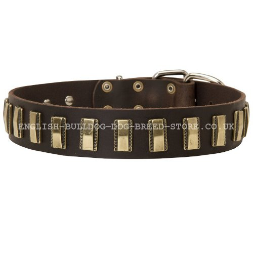 Boxer Dog Leather Collars