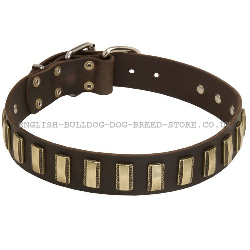 Boxer Dog Leather Collar