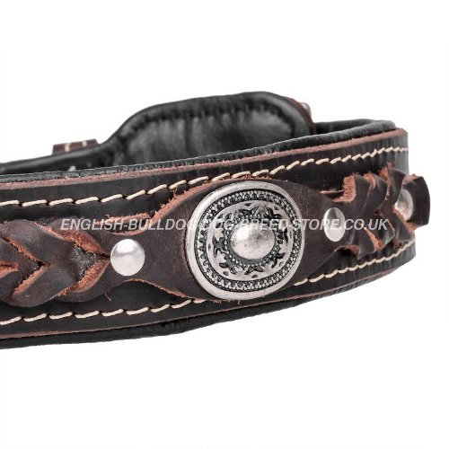 Leather Dog Collars for Bulldogs