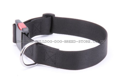 Nylon Dog Collar Adjustable