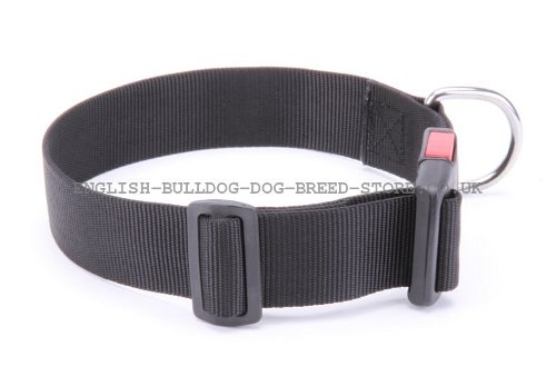 Nylon Collar with Buckle