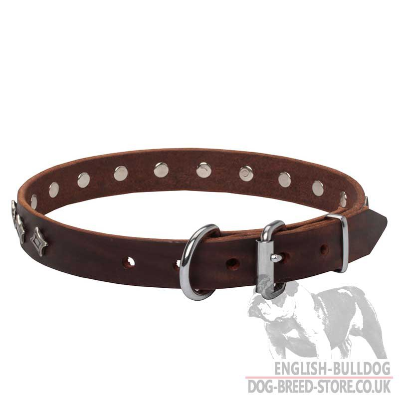 High End Dog Collars Uk