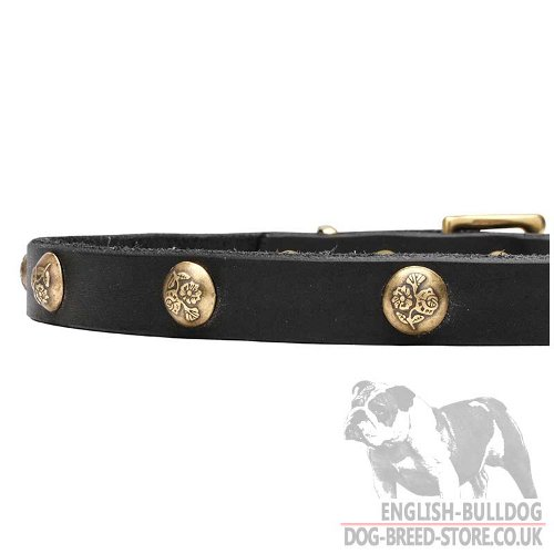 Thin Leather Dog Collars