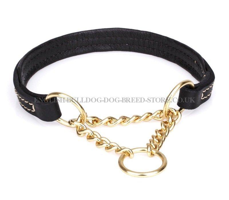 Gold Chain Collar On Tan Dog