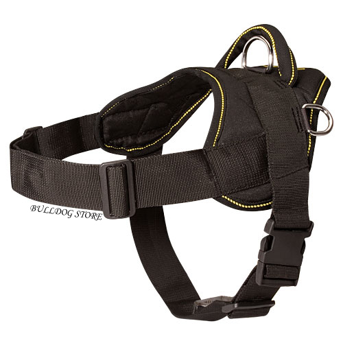 French Bulldog Nylon Harness
