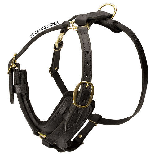 Luxury Dog Harness