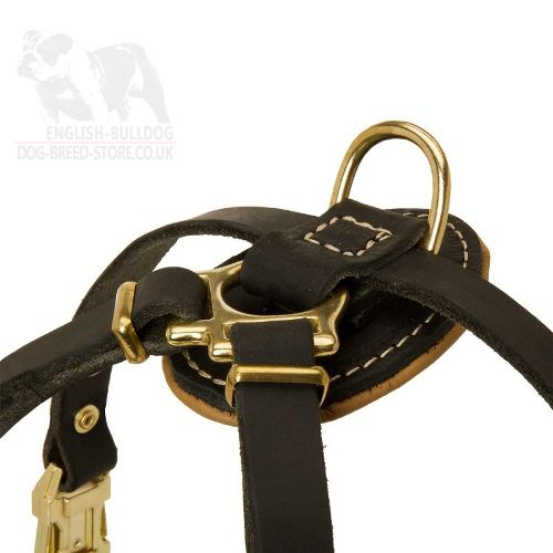 Small Leather Harness