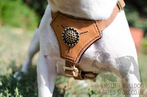 Leather Dog Harness Small
