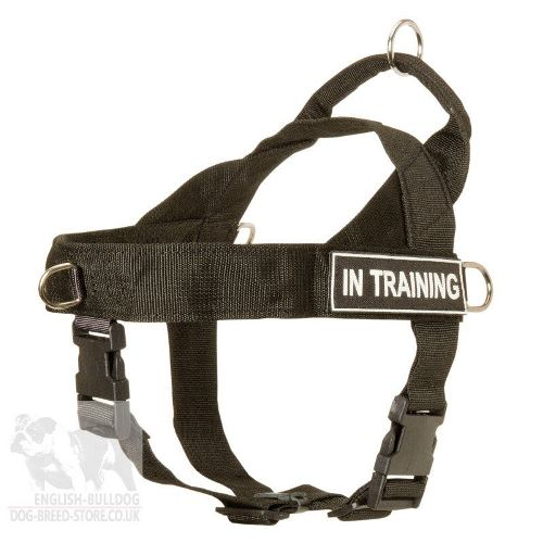 No Pull Dog Training Harness