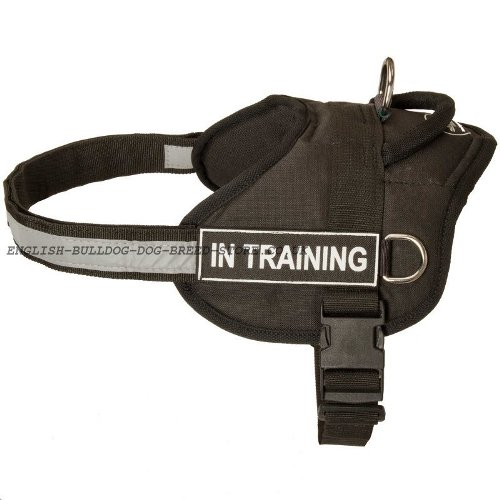 K9 Boxer Harness