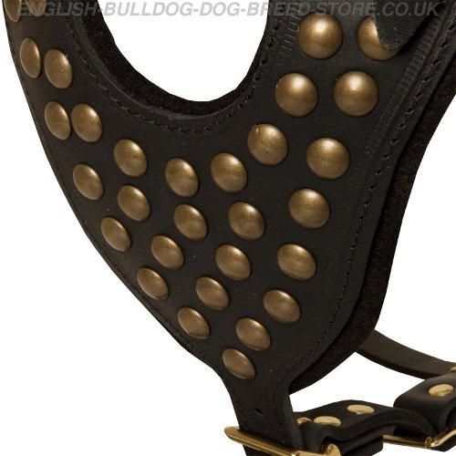 Dog Studded Harness