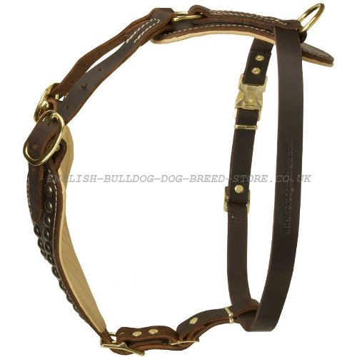 Studded Dog Harness UK