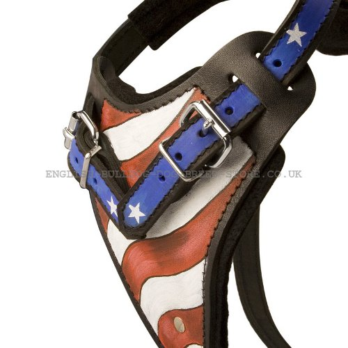 Handmade Leather Dog Harness UK