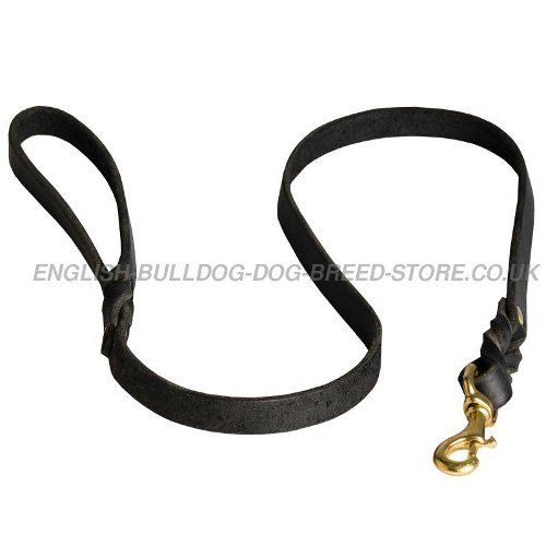 Best Leash for Bulldog