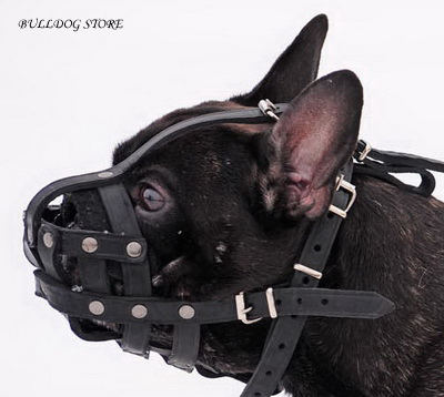 French Bulldog Muzzles UK