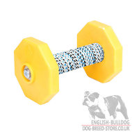 Dog Obedience Training Dumbbell with Two Weight Plates, 650 g
