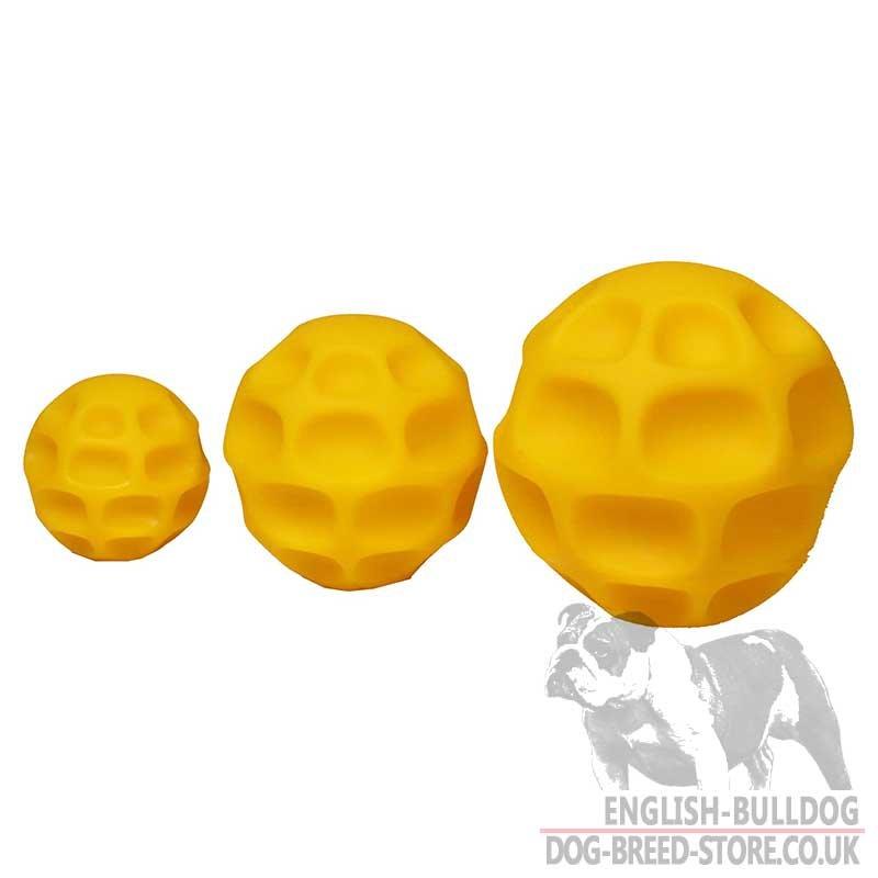 Large Dog Treat Ball
