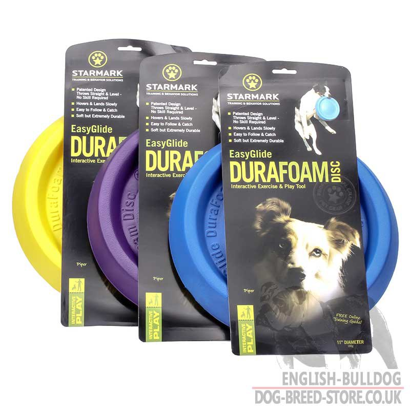 Dog Training Discs How To Use