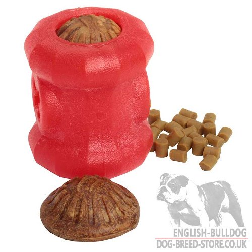 Dog Toy Puzzle Treats