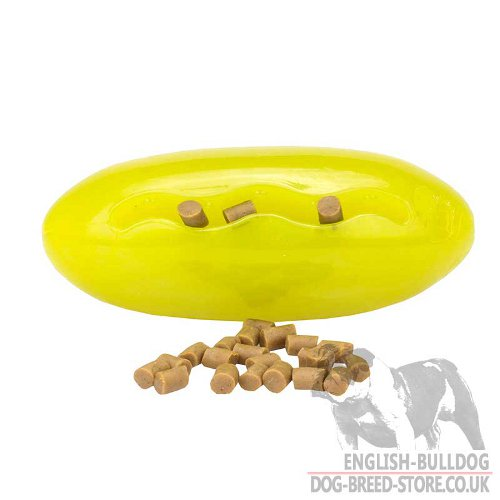 Dog Treat Dispenser Toy