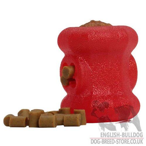 Dog Toys Dental Health