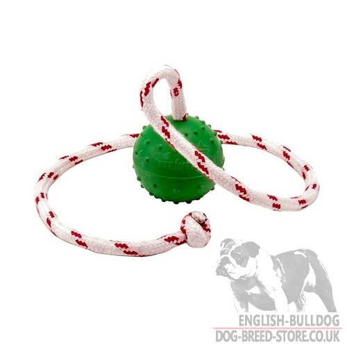 English Bulldog Toys Best