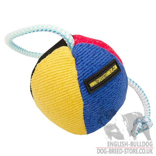 Soft Dog Ball Toy