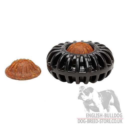 Treat Wheel Dog Toy