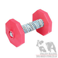 Dog Training Dumbbell Retrieve with Two Red Plates, 650 g